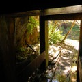 Mine shaft along the Opal Creek Hiking Trail.- 10 Adventures to Explore Mines + Tunnels!