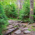 Trail up Pack Monadnock.- 10 Favorite State Parks in New Hampshire