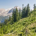 Reaching Whatcom Pass after a brutal climb.- A Week on the Pacific Northwest National Scenic Trail