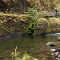 Swimming hole along the Eagle Creek Hiking Trail- Video: Rivers of the Pacific Northwest