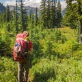 The descent to Baker Lake on the Swift Creek Trail, with amazing Mount Baker views.- A Week on the Pacific Northwest National Scenic Trail