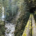 South Fork Clackamas Falls in the distance.- 7 Great Reasons to Go Outside in the Fall, Part 3: High Water