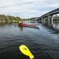 Paddling adjacent to Marsh Island and WA Highway 520 at Washington Park Arboretum.- 50 of Washington's Best Sea Kayaking Adventures