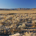 BLM lands in Harney County, Oregon.- Bureau of Land Management
