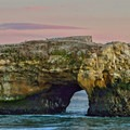 Natural Bridges State Beach.- 5 Great Ways to Explore Santa Cruz