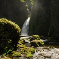 Columbia River Gorge National Scenic Area: Wahclella Falls and Tanner Creek.- National Scenic Areas