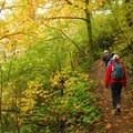 Cape Horn Trail.- Best Fall Hikes Near Portland