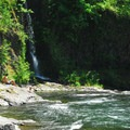 Wilson River and Lower Bridge Creek Falls at Footbridge Day Use Area.- Oregon's 30 Best Swimming Holes