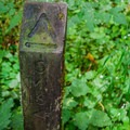 5 Mile Island signpost on Hoh River trail in Olympic National Park.- The Basics of Backpacking with Kids