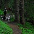 Hiking along Walupt Lake.- Walupt Creek Falls in the Goat Rocks Wilderness