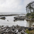 The view from Kalaloch Lodge.- 7 Great Reasons to Go Outside in the Fall, Part 7: Off-Season Lodge Rates