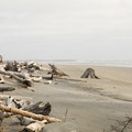 View toward the north jetty at Cape Disappointment State Park- Best Coastal Campgrounds in Oregon and Washington