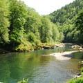 Wilson River at Keenig Creek Campground.- Meet the Wild Salmon Center