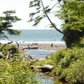 Short Sand Beach, Oswald West State Park, Oregon.- Special Report: State Parks
