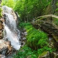 Trail in the Flume Gorge in Franconia Notch State Park.- 10 Favorite State Parks in New Hampshire