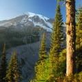 Mount Rainier (14,410 ft), Mount Rainier National Park.- National Park System