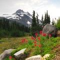 Mount Jefferson Wilderness: Jefferson Park.- National Wilderness Preservation System