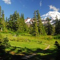 Spray Park and Mount Rainier (14,411').- Mount Rainier's 7 Best Day Hikes
