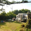 Protected and private campsites at Cape Lookout State Park- Best Coastal Campgrounds in Oregon and Washington