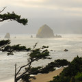 View north looking at Haystack Rock and Cannon Beach from Silver Point State Scenic Viewpoint.- Oregon Islands National Wildlife Refuge