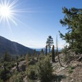 View along the Sunset Ridge Trail.- Where to Camp in California's San Gabriel Mountains