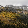 Snow is such a great addition to the fall foliage.- How to Photograph Autumn Colors
