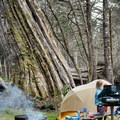 Camping at Cape Lookout State Park on the Oregon Coast. - The Basics of Camping With Kids