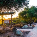 Nipomo Native Garden is a beautiful place to learn about flora native to the California coastline.- 3-day Adventure Itinerary for Santa Maria Valley