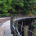 Train trestle on the Upper Salmonberry River Trail.- Sights Unseen: 5 Overlooked Hikes on the Northern Oregon Coast