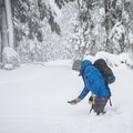 Working on finding a buried beacon.- Welcome Winter with an Avalanche Awareness Course