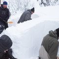Snow pits reveal some of the recent precipitation history.- Welcome Winter with an Avalanche Awareness Course