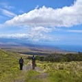 Workers heading back down the Koai'a Corridor after tree planting with the Kohala Watershed Partnership. - Volunteering Vacations on Hawai'i's Big Island