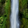 Tunnel Falls at the end of the Eagle Creek Hike.- 7 Great Reasons to Go Outside in the Fall, Part 2: Migratory Species