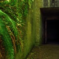 Fort Canby WWII bunker at the top of McKenzie Head.- Columbia River Harbor Defense System