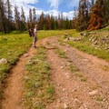 Kings Peak Trail, Uintas Wilderness.- We Need Leave No Trace Now More Than Ever