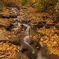 Church Fork Trailhead in Millcreek Canyon.- Wasatch Waterfalls