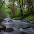 - Alder Glen Recreation Site