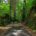 - Loon Lake Recreation Site Campground