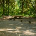 - McKenzie Bridge Campground