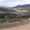 - Los Peñasquitos Canyon Preserve