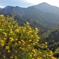 - Santa Ana River Trail to Angeles Oaks
