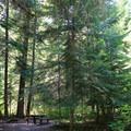 - Tumwater Campground