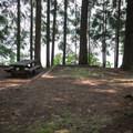 - Baker Bay Campground, Dorena Reservoir