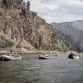 - Main Salmon River: Corn Creek to Carey Creek