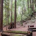 - Wastahi Campground