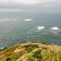 - Otter Crest State Scenic Viewpoint