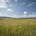 - Conboy Lake National Wildlife Refuge