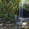 - Twin Falls Hike + Wailele Farm