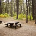 - Junction Creek Campground