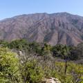 - Buzzard's Roost Trail